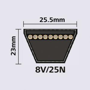 8V 25N